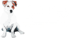 Steamin Billy_logo
