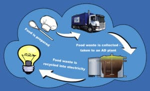 Food Waste Cycle