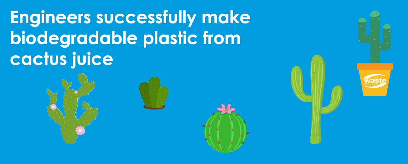 Engineers Successfully Make Biodegradable Plastic From Cactus Juice