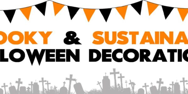 Spooky & Sustainable Halloween Decorations